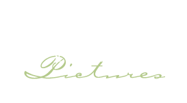 Willow Street Pictures logo