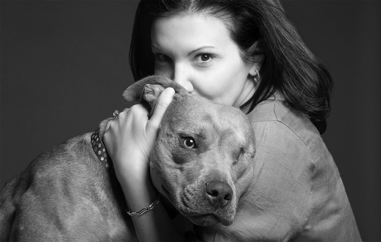 pitbull pet photographer philadelphia pa willow street pictures