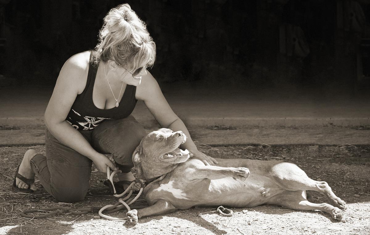 Speranza Animal Rescue, Lancaster County Magazine