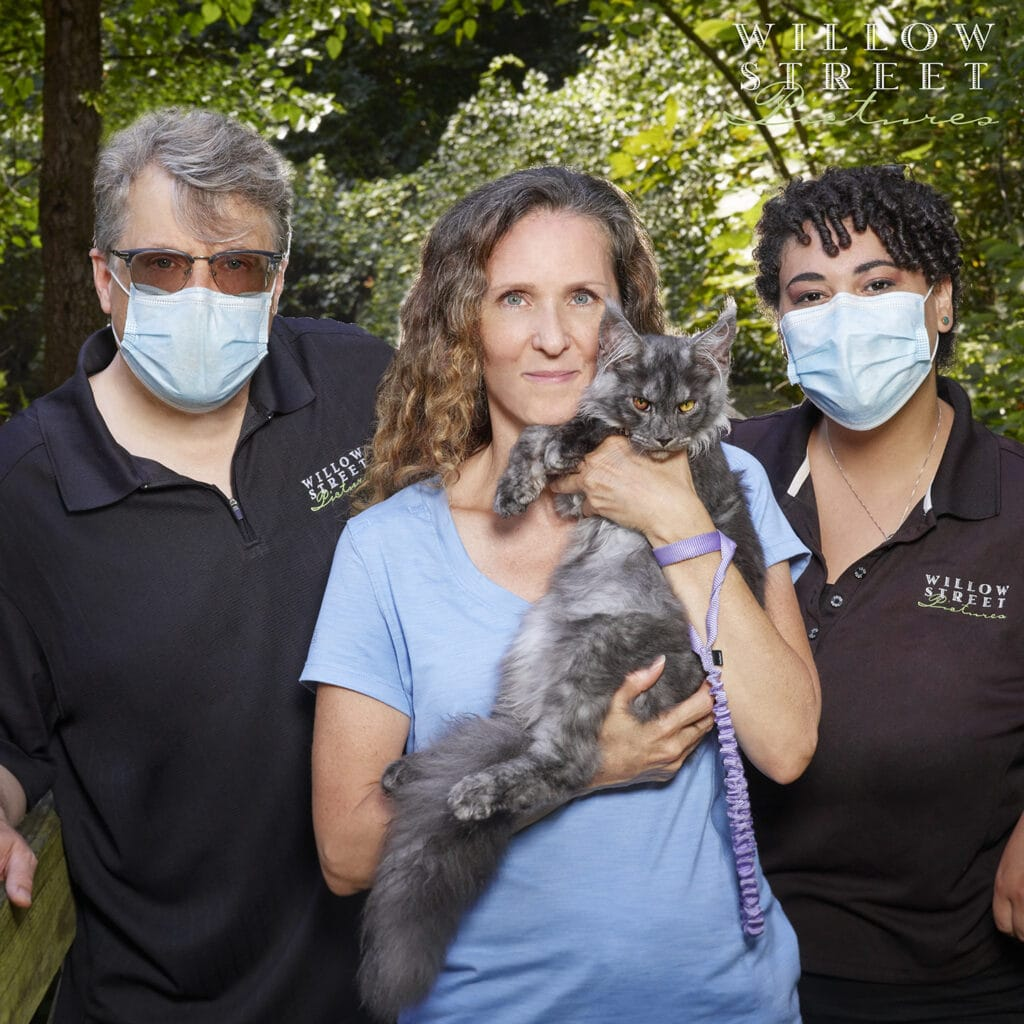 Donates photography to help save Maine Coon kitten's life from FIP