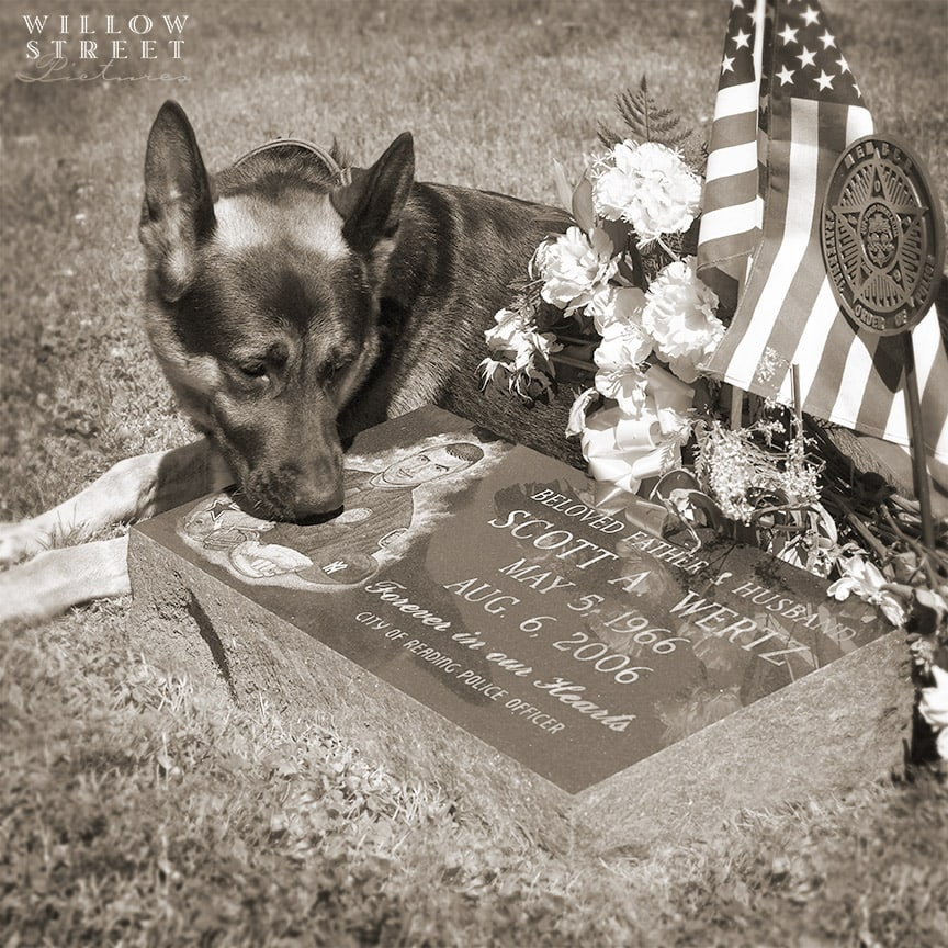 Remembering Rocky of the Reading K-9 Unit