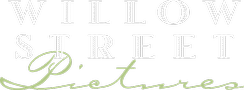 Our logo - Willow Street Pictures