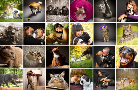 pet photography gallery - Willow Street Pictures